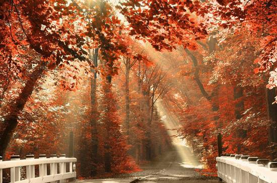 equnozio d'autunno