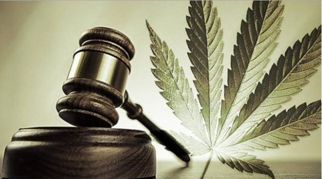 cannabis-legalizzazione-droghe-leggere