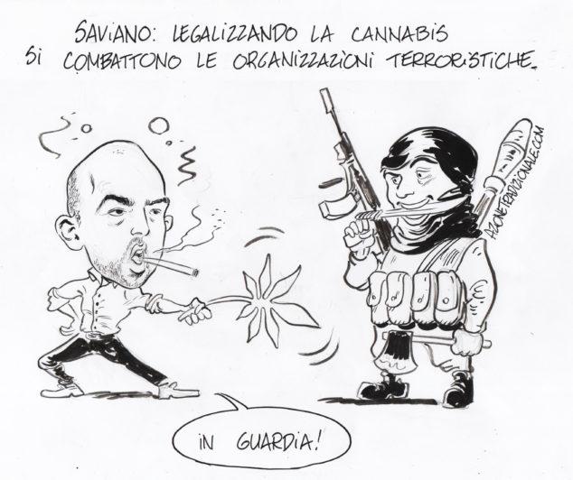 savianocannabis-vignetta