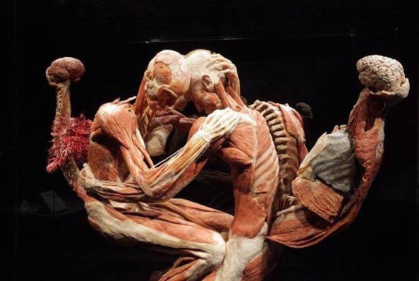 real-bodies-cadaveri-morte