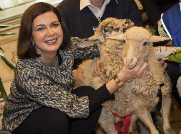 boldrini-agnello-pasqua-animalisti-vegetariani