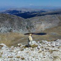 Ascesa alla cima del Murolungo (23/07/17) – recensione