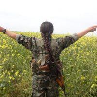 Siria e Turchia sul piede di guerra? Tranquilli, ecco la soluzione dei buonisti di SlowFood